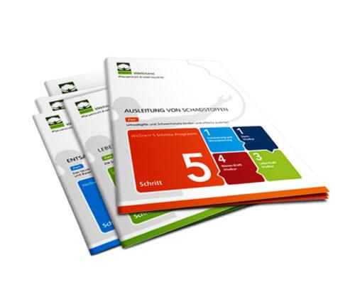 Wellnest International - 5 Schritte Programm